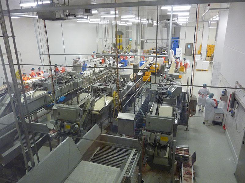 Sea Fish Production